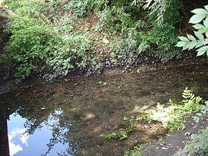 Leagrave - Knapps Brook in Leagrave