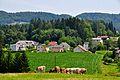Koettmannsdorf Aich 07072011 111.jpg