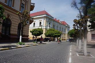 Kolomyia - A street in Kolomyia Old town