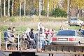 Konakovsky District, Tver Oblast, Russia - panoramio (66).jpg