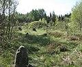 Kurhan i kamienny krąg w Trątkownicy - panoramio.jpg