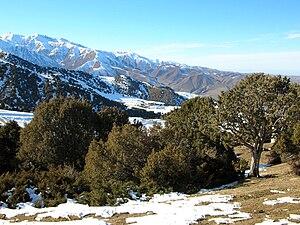 Kyrgyz Ala-Too Range - Image: Kyrgyzstan Mounts Kyrgyz Ala Too 001