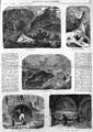 L'Illustration - 1858 - 093.png