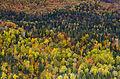 L'automne au Québec (8072563739).jpg