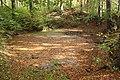 Lázně Libverda, rybníček u Přebytku.jpg