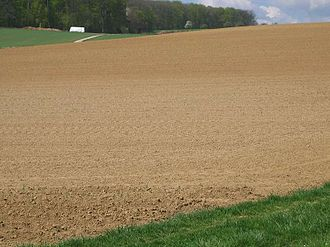 Soil - Soil, on an agricultural field in Germany, which has formed on loess parent material.