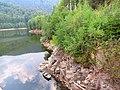 Lacul de acumulare Tău-Bistra, judetul Alba-IMG 5276.JPG