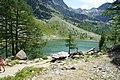 Lago d'Arpy - panoramio (5).jpg