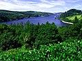 Lake Vyrnwy (Llyn Efyrnwy) - geograph.org.uk - 347631.jpg