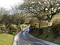 Lane approaching Rowden Cross - geograph.org.uk - 680879.jpg