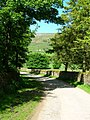Lane from Cogden Hall - geograph.org.uk - 1346122.jpg