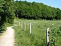 Langdalen (øst) 03.jpg
