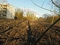 Lauterborn Weidigweg 12.jpg