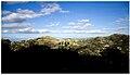 Le colline di mineo.jpg