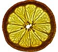 Lemon slice with Lightbox.jpg