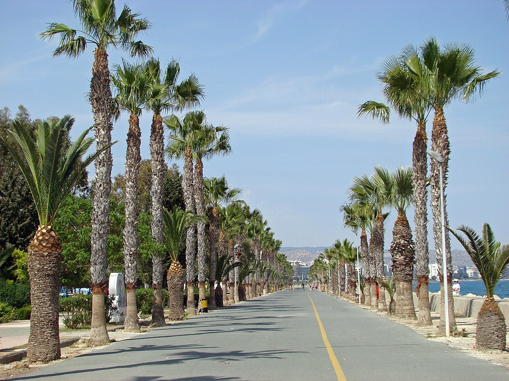 Apollonia Beach Hotel Limabol Cyprus