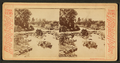 Lincoln Park, Chicago, from Robert N. Dennis collection of stereoscopic views 3.png