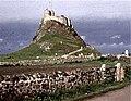 Lindisfarne Castle - geograph.org.uk - 261038.jpg