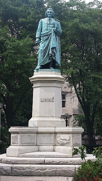 Midway Plaisance - Linne statue on University of Chicago campus