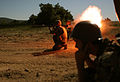 Live fire exercise with US, Serbian and Bulgarian troops DVIDS421012.jpg
