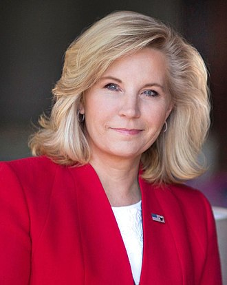 Liz Cheney - Cheney in 2016
