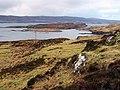 Loch Dunvegan - geograph.org.uk - 1126204.jpg