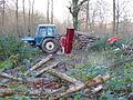 Logging near Noddings Farm - geograph.org.uk - 291815.jpg