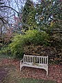 Long shot of the bench (OpenBenches 2793-1).jpg