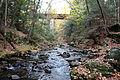 Looking upstream on Fort River, Amherst Massachusetts.JPG