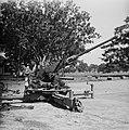 Luchtafweergeschut (Bofors 40L60 of 40L70), Bestanddeelnr 11302.jpg