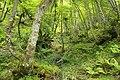 Lujuria 2 - panoramio.jpg