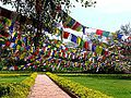 Lumbini - Colourful Flags, Lumbini (9241354317).jpg