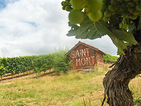 Image illustrative de l'article Saint-mont (AOC)