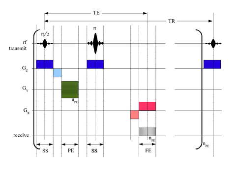 simplified timing diagram for two-dimensional-fourier-transform (2dft) spin  echo (se) pulse sequence
