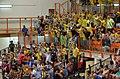 Maccabi Tel Aviv Volleyball fans.jpg