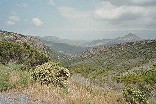 Maquis shrubland vegetation zone