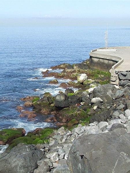 File:Madeira - Camara De Lobos (2093418322).jpg