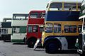 Maidstone & District bus 5558 (558 LKP) and others (2).jpg