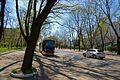 Maly Fontan, Odessa, Odessa Oblast, Ukraine - panoramio (2).jpg