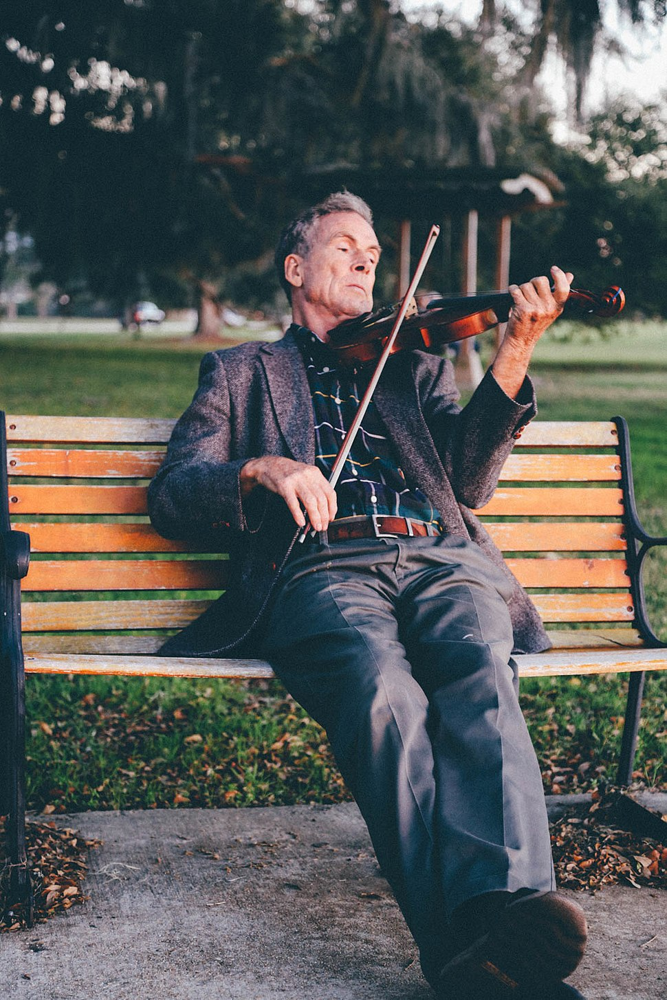 Man Playing Violin on Bench at Park