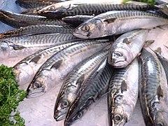 lista de pescados azules y blancos: