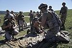 Marines Conduct Trilateral Training during Lisa Azul 150309-M-XZ244-099.jpg