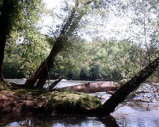 McIntosh Reserve