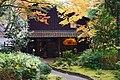 Meiji no Mori Minoh Quasi-National Park Minoh Osaka pref Japan23n.jpg