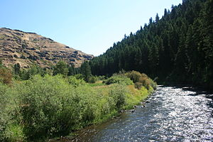 Minam River near confluence with Wallowa River IMG 4501.jpg