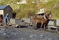 Mine charbon Santa Cruz del Sil avril 1983.jpg