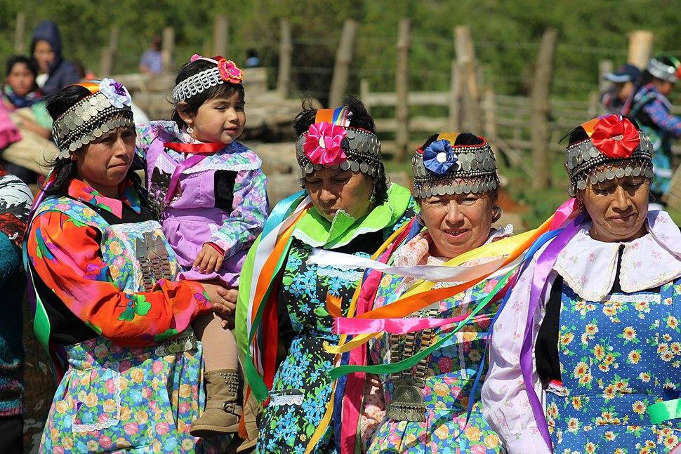 Ministro Osorio entrega terreno a Comunidad Mapuche Lorenzo Quintrileo de Tir%C3%BAa