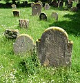 Mit einem Grabstein aus dem Jahr 1076 gehört der Heilige Sand zu den ältesten erhaltenen Judenfriedhöfen in Europa. - panoramio.jpg