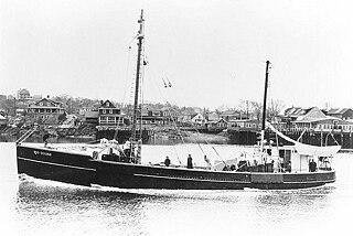 USS <i>Mockingbird</i> (AMc-28)
