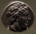 Moneta di sinope, 300-200 ac ca., inv. 953.jpg